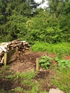 Home compost pile by Circespeaks